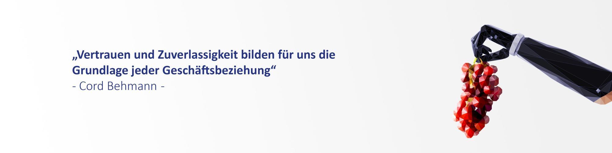 Cobe Consulting GmbH